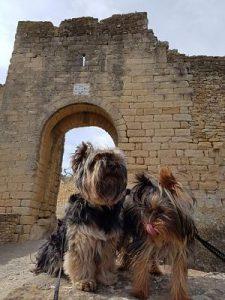 Ruta Medieval por Girona