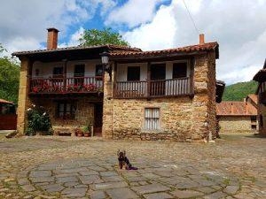 Barcena Mayor y Museo Altamira con perro