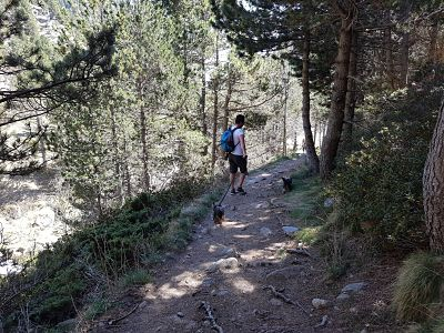 Paseando por un sendero valle nuria