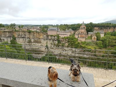Aveyron con perro, Bozouls