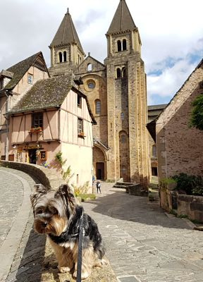 Aveyron con perro, conques