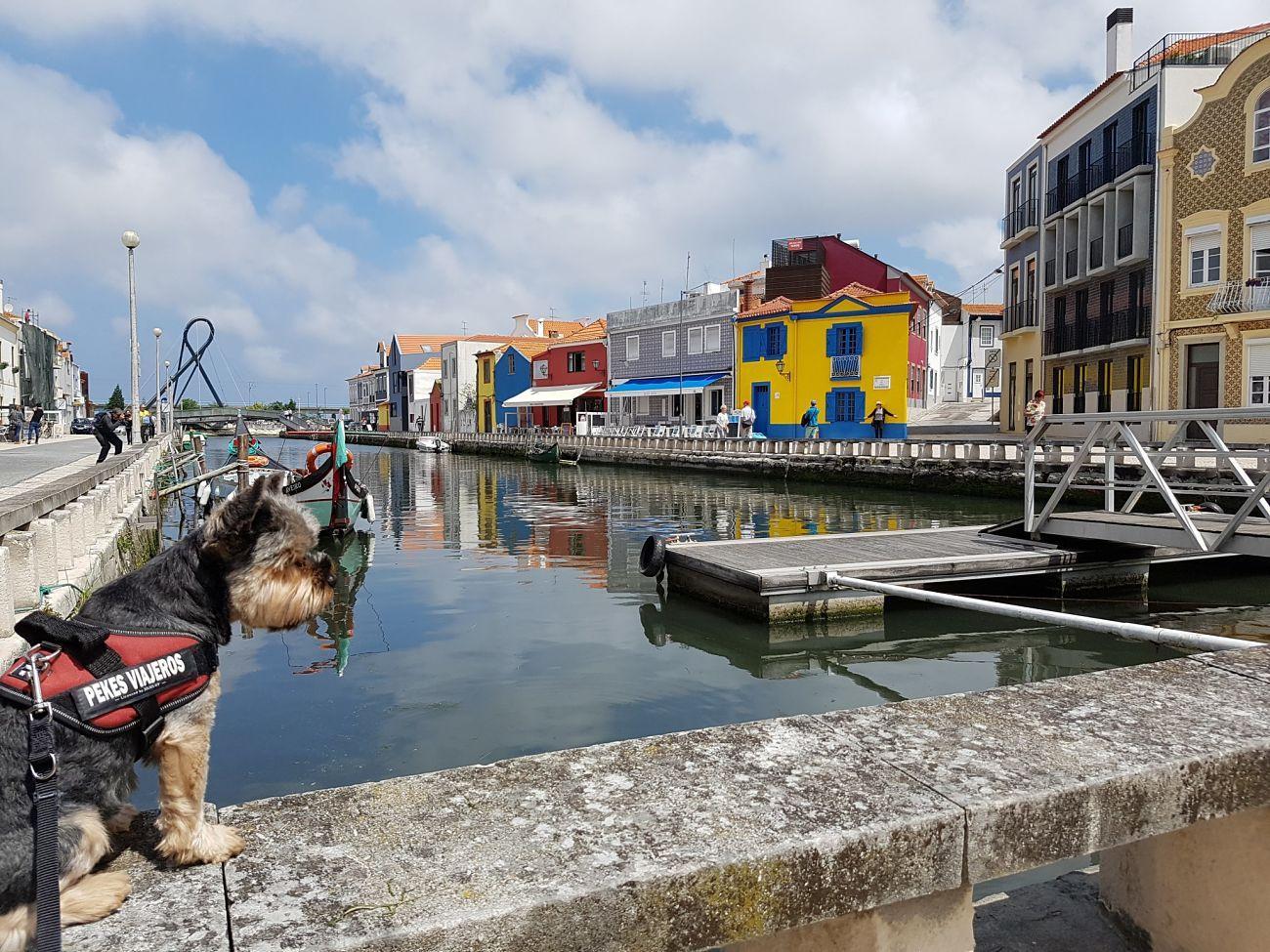 canales Aveiro Pekesviajeros
