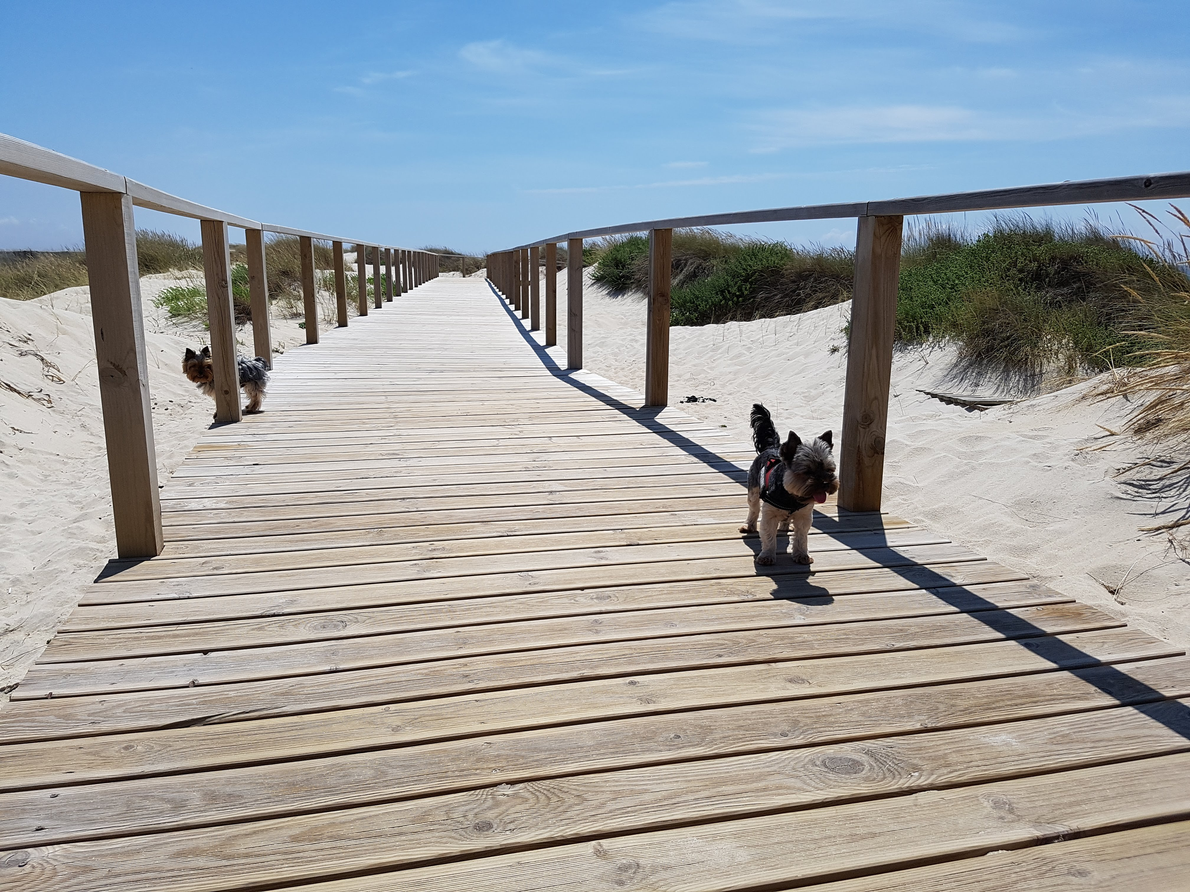 Playa Costa Nova Aveiro Pekesviajeros