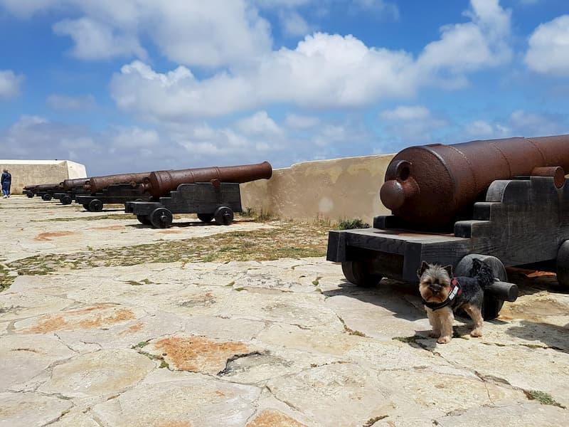 Algarve con perro 3- Pekes Viajeros