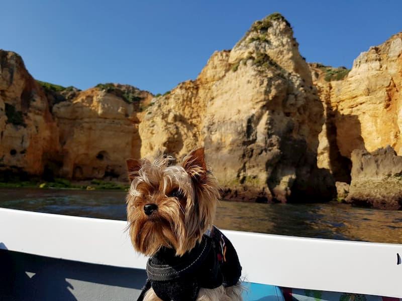Algarve con perro 4- Pekes Viajeros