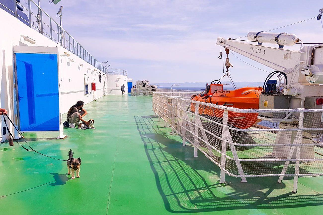 Grimaldi lines con perros