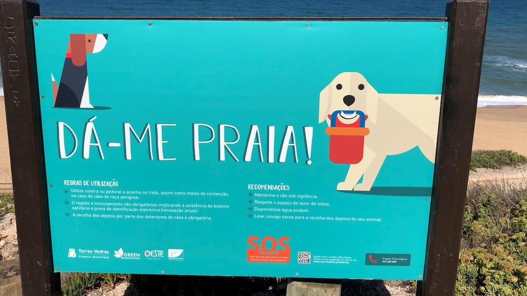 portugal con perro