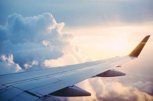 Viajar en avión con perro ✈️Guía 2021