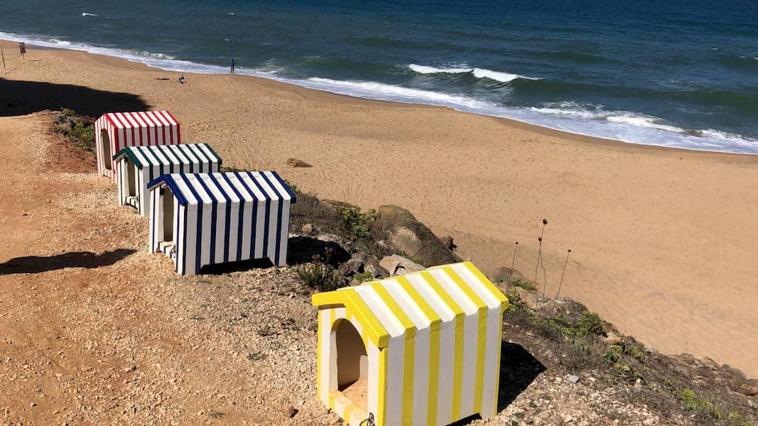 playas admiten perros portugal